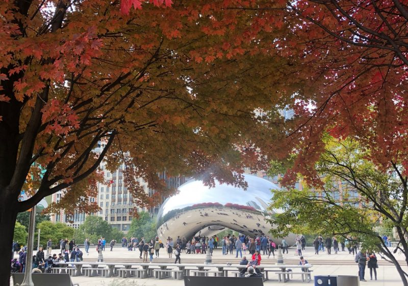 The Bean with Fall Foliage
