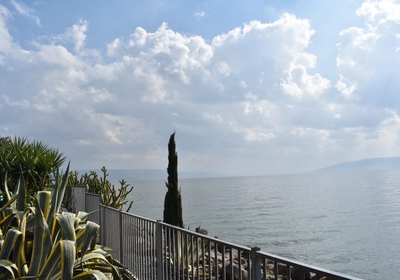 Sea of Galilee Views